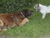 Fiona och My